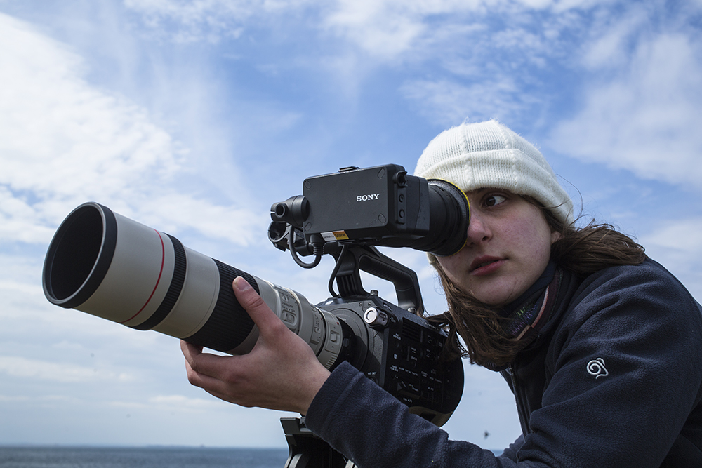 Leanne filming puffins on the Farne Islands