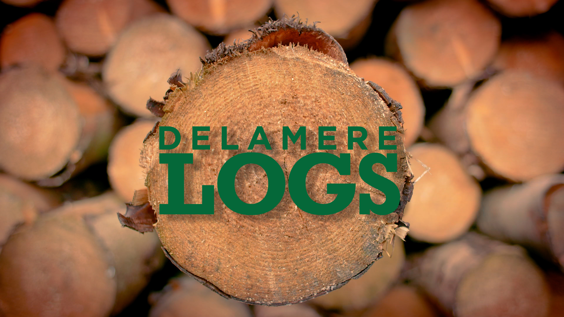 A video for Delamere Logs