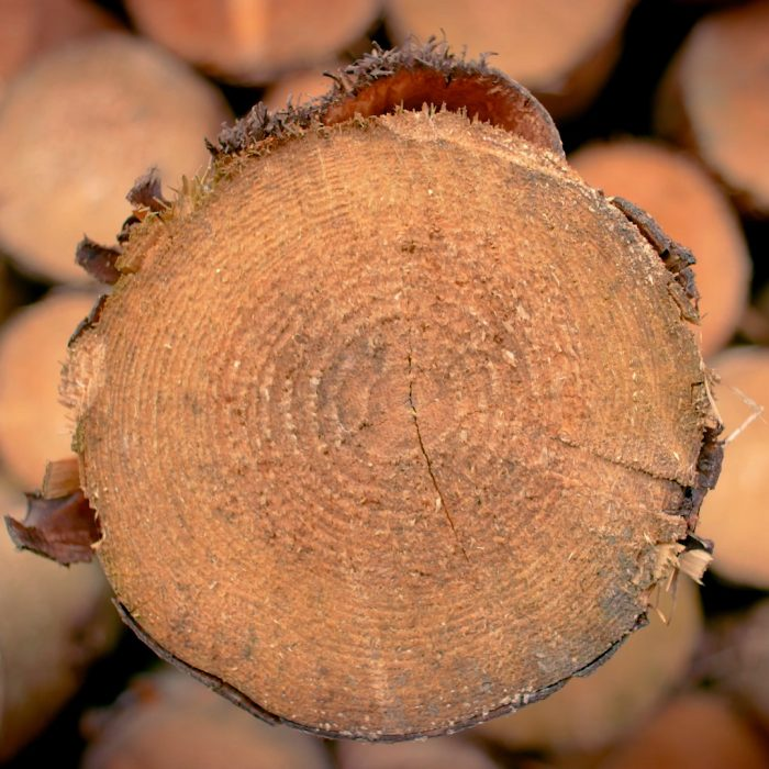 Delamere Logs