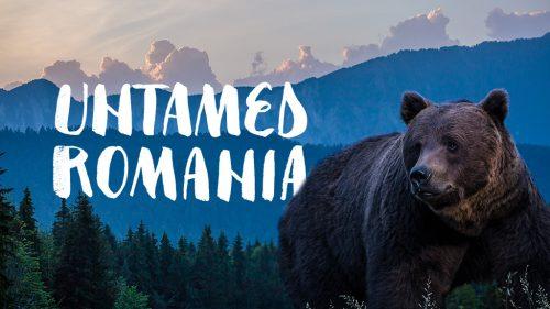 untamed romania - natural history documentary - wild films ltd